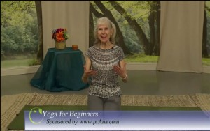 Yoga for Beginners prAna sponsor Feb 27, 2017